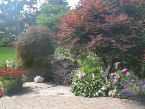 backyard landscaping, trees, shrubs, gardens, rocks