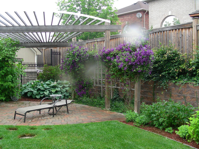 wood trellis, fences landscaping