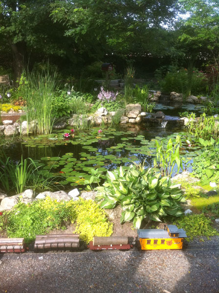 rock garden landscaping, pond