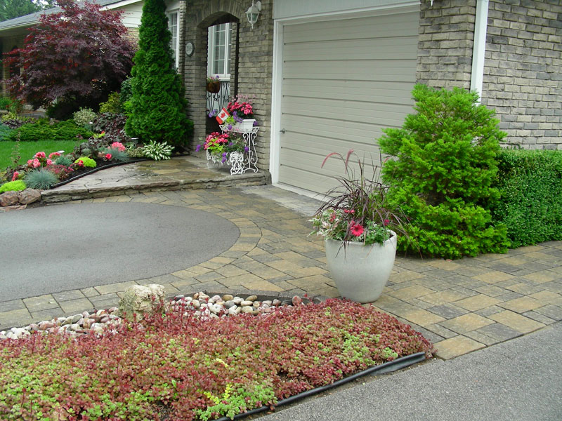 front yard landscaping, trees, shrubs, interlocking stone