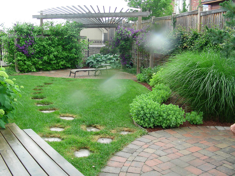 backyard landscaping, trees, shrubs, gardens