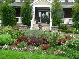 Low maintenance front yard landscapers, gardens