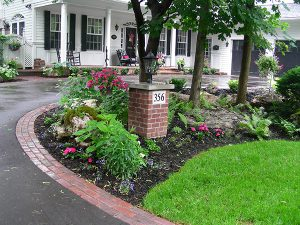 Low maintenance front yard landscapers, trees, shrubs