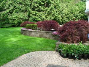 stone retaining wall and patio